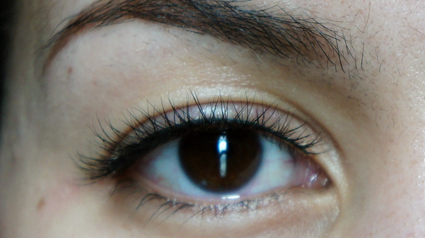 everblinks lashes14