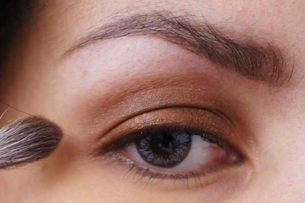 golden brown eyelook_08