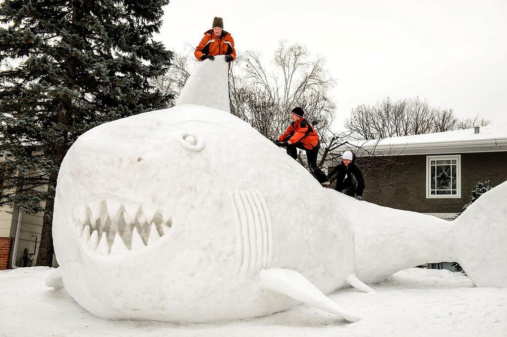 snow-shark4