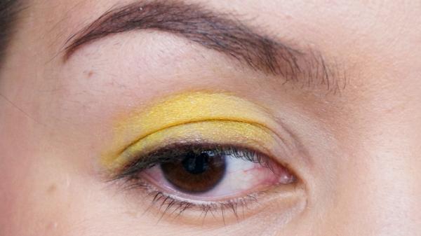 papillon eyelook_02