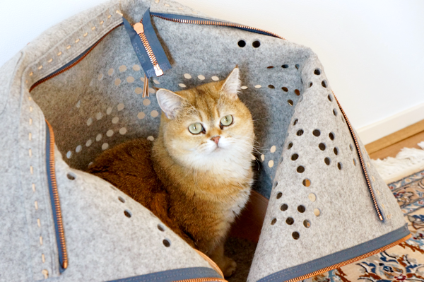 travel cat bag_07