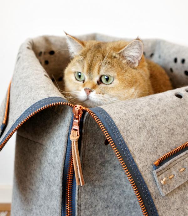 travel cat bag_14