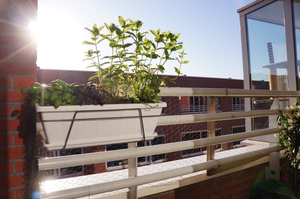 balkon opknappen-27