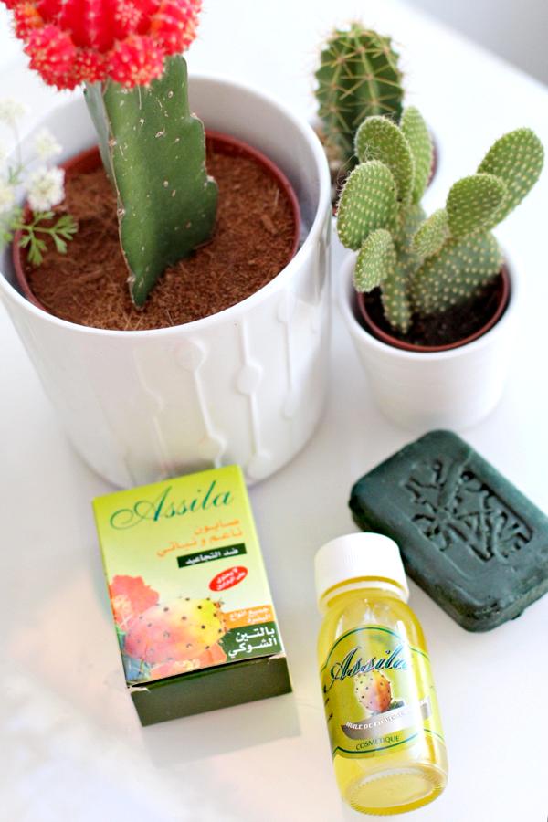 cactusvijgolie-2