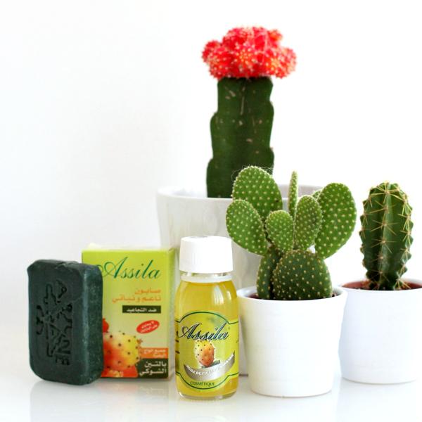 cactusvijgolie-4
