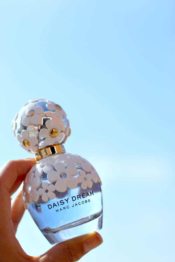 daisy dream review_5