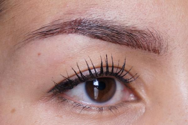 catrice longlasting brow definer_05
