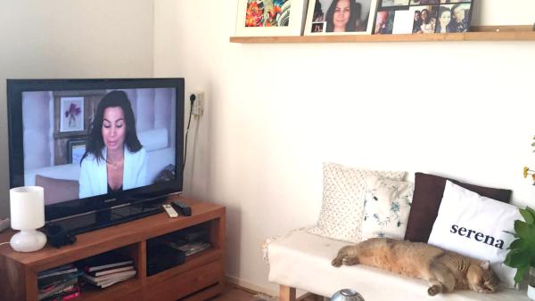 beautylab tv