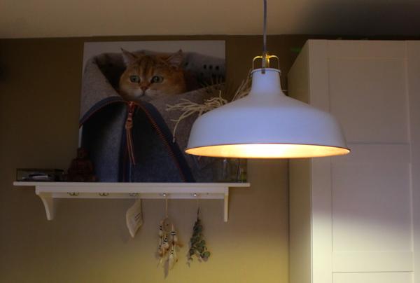 Praxis Lampen Aanbieding : Industriele lamp praxis: brilliant hanglamp folder aanbieding bij