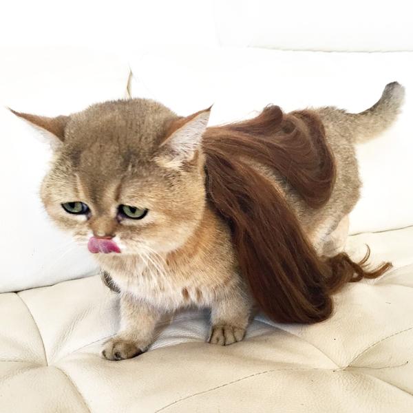 hoe krijg ik volume in mijn haar - 6