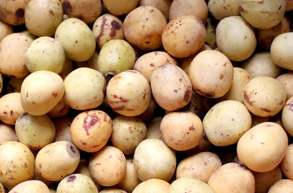 marula vruchten