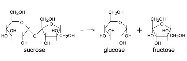 hydrolized sucrose