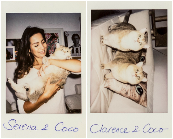 coco clarence polaroids