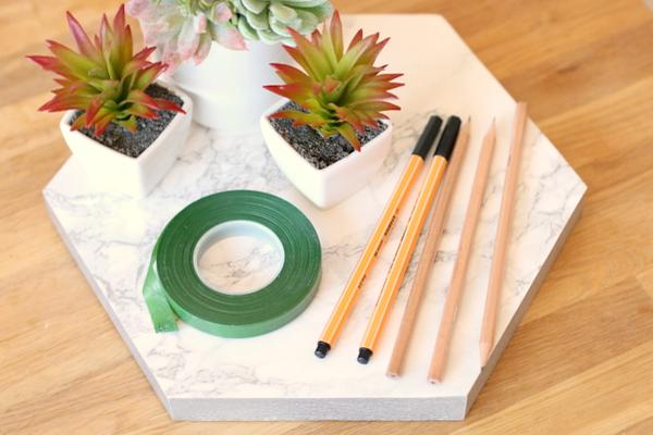 DIY vetplant pennenbakje - 2