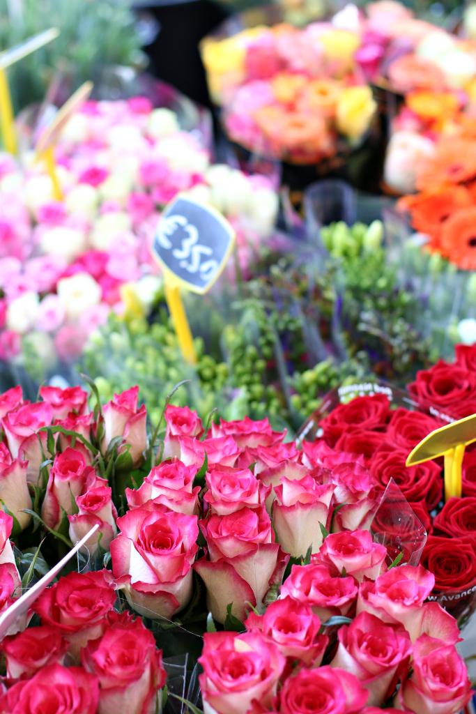 bloemen tips - 2