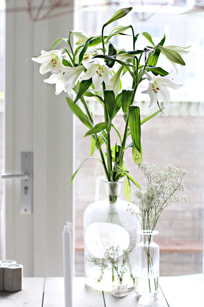 bloemen tips - 6