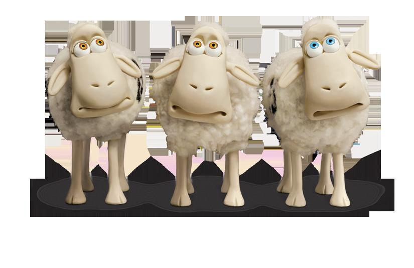 sheep0037s